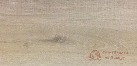 Ламинат Alsapan, колл. Solid Medium, Монет 527 фото №1