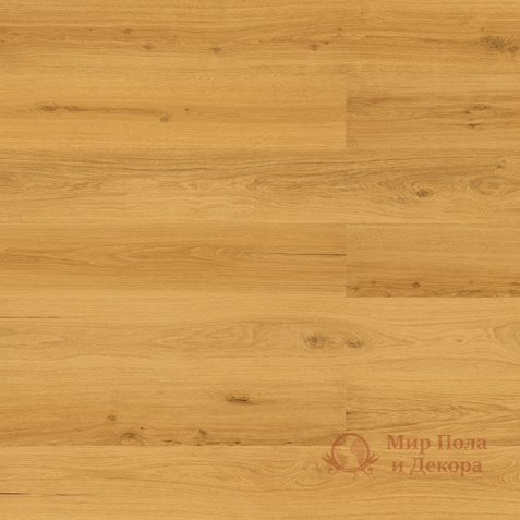 Пробковые полы Wicanders, колл. Wood Essence, Дуб Golden Prime арт. D8F7001 фото №1
