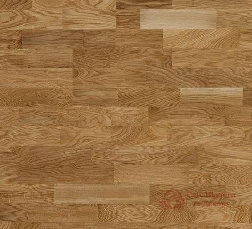 Паркетная доска Focus Floor, Дуб Lombarde Matt 3-х пол. фото №1