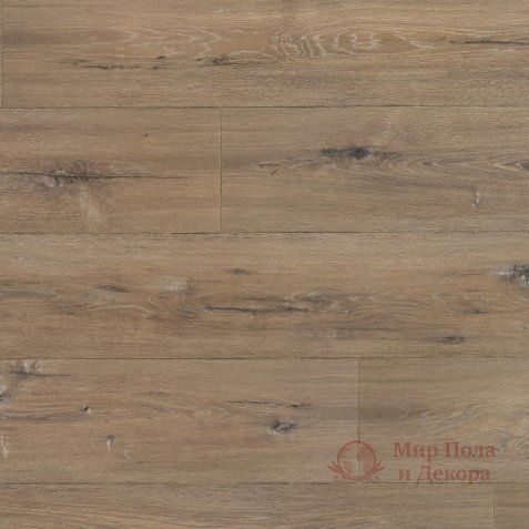 Ламинат Grandeco, колл. Charme, Дуб Миллениум натуральний 3243 фото №1