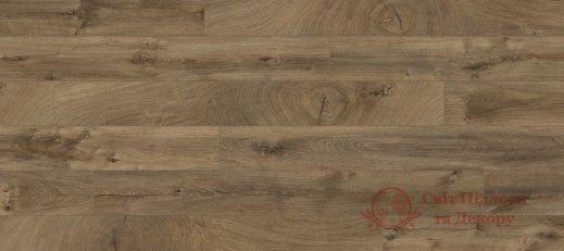 Ламинат Kaindl, колл. Natural Touch Premium, Дуб Fresco Bark K4382 фото №1