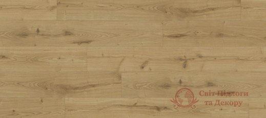 Ламинат Kaindl, колл. Classic Touch Standard, Дуб Severina 37813 фото №1