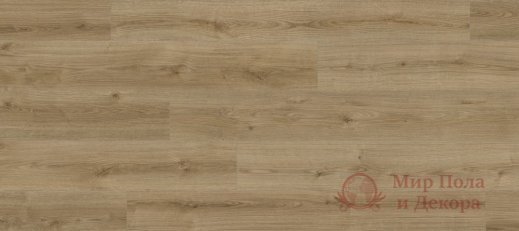 Ламинат Kaindl, колл. Natural Touch Standard, Дуб Evoke Trend K4421 фото №1