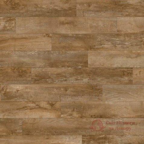 Виниловая плитка Moduleo, колл. Select Click, Дуб Country 24842 фото №1